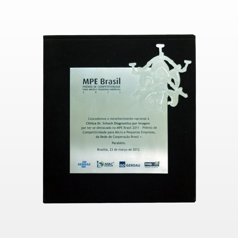MPE Brasil 2011 - Prêmio de Competitividade para Micro e Pequenas Empresas, da Rede de Cooperação Brasil +